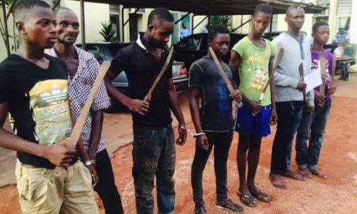 [Contribution] Les « microbes » en Côte d'Ivoire : symptôme d'une société en crise ?