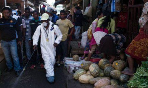 Madagascar : fin de la peste pulmonaire