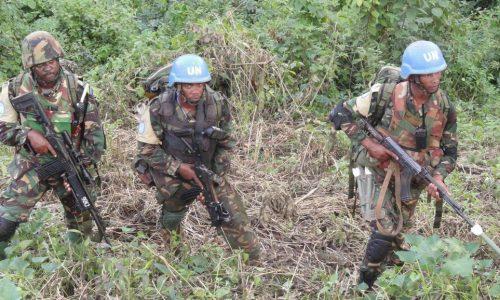 RDC: au moins 14 casques bleus et 5 FARDC tués dans le nord-est