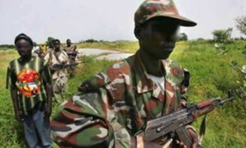 Crise casamançaise: « L'option militaire n'est pas une option gagnante… »