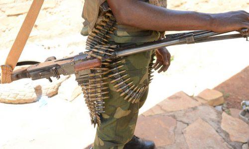 RCA: cent ex-rebelles intégrés à l'armée centrafricaine après formation