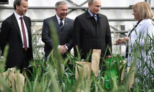 Poutine se vante d'avoir fait de l'agriculture une «locomotive» économique