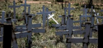 Afrique du Sud: l'Australie envisage des visas pour les fermiers blancs «persécutés»
