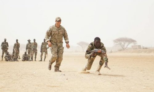 Niger: manoeuvres militaires internationales contre le terrorisme