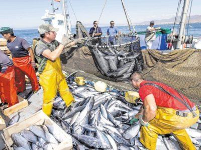 Maroc-UE: début vendredi des négociations pour un nouvel accord de pêche